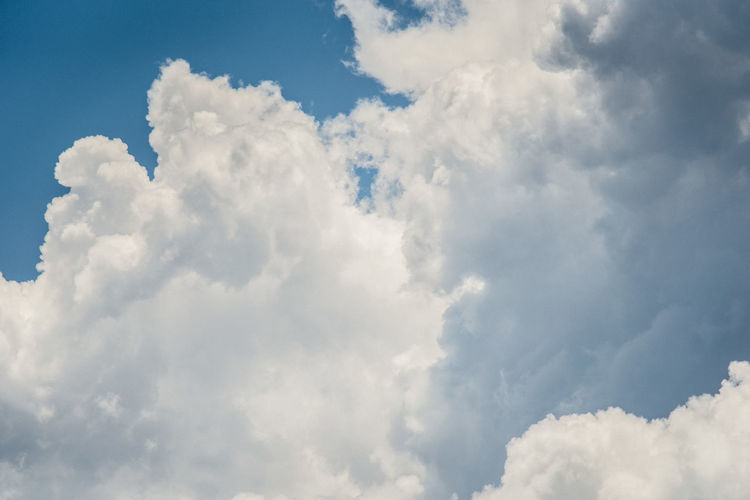 Cloud - Sky Sky Beauty In Nature Scenics - Nature No People White Color Backgrounds Tranquility Cloudscape Nature Blue Tranquil Scene Fluffy Day Outdoors Idyllic Environment Low Angle View Softness Wind Meteorology Bright