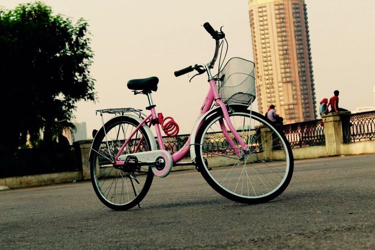Bicycle Mode Of Transport Outdoors Land Vehicle Street Light No People Pink Color City Awesome Day Bike Ride Ride A Bike