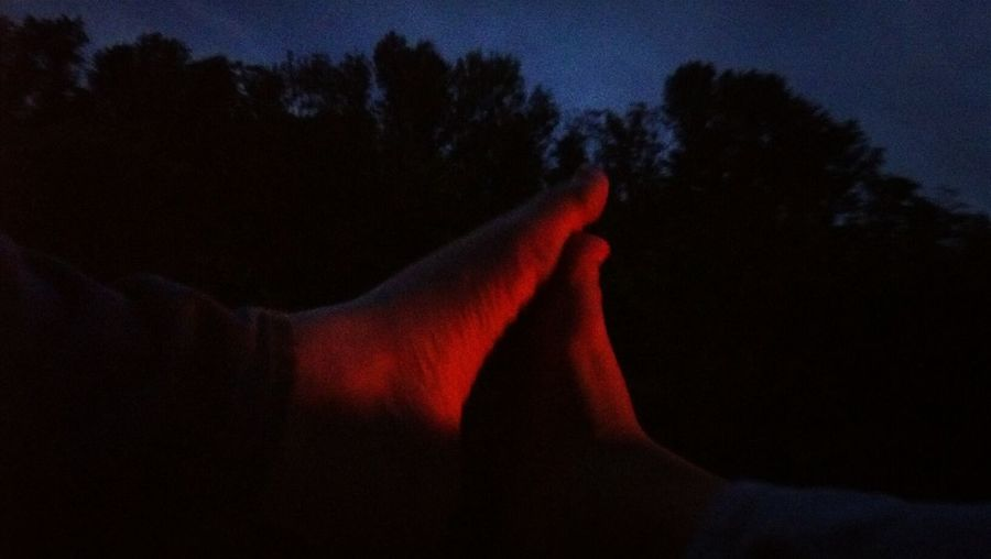 Close-up of silhouette hand against trees at night
