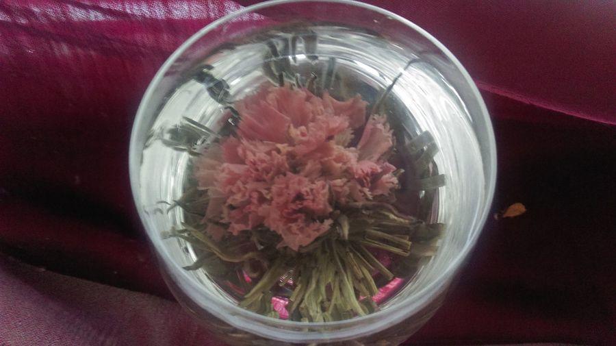 Photographic Memory traveling to China wonderful holiday Chinese New Year Pink Flower