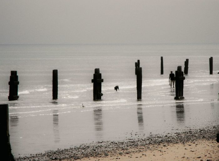 Silhouette wooden posts on beach against sky