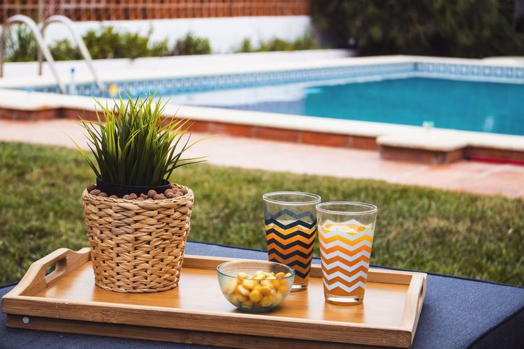 Potted plant on table by swimming pool