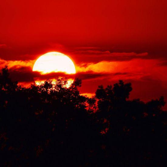 Sunset in Northamptonshire Weather Sunset Sun Clouds Clouds And Sky Northampton Northamptonshire Northants