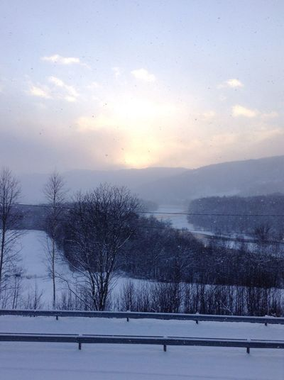 It's snowing! Snow Snowing Showcase: December Christmastime Nature Norway Sun Valley Snow ❄
