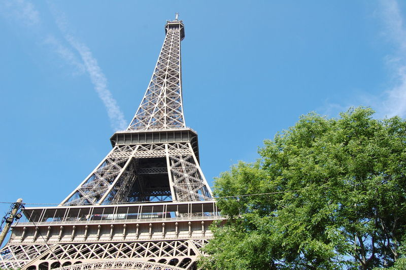 The Eiffel tower Architecture Sky Plant Tall - High Tower Metal Travel Destinations Low Angle View Tree Built Structure Tourism Travel Day Nature History Architectural Feature No People Outdoors Iron - Metal Humanity Meets Technology My Best Photo Iron #NotYourCliche Love Letter 17.62°