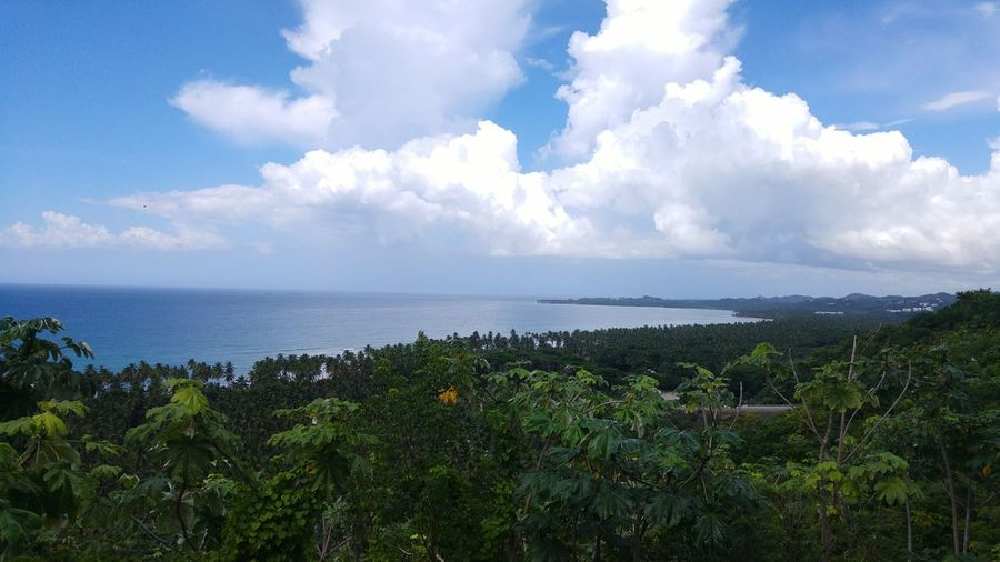 Mirador Mirador De Coson Las Terrenas Lookout Point Coastal Views Nature Photography Tourism Must See Check This Out Dominican Republic Vantage Point Road Trip Island Life Sightseeing