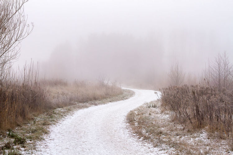 road to nowhere Beauty In Nature Day Fog Landscape Nature No People Outdoors Scenics Tree Winter