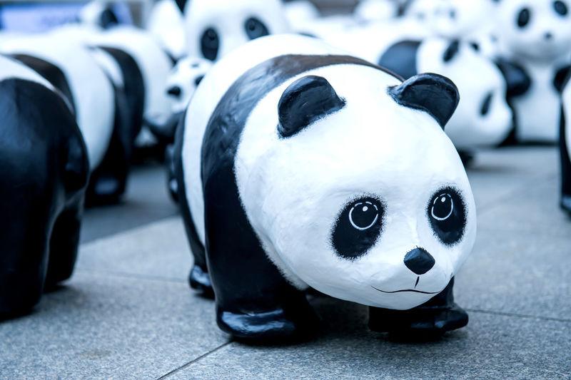 panda sculptures. Animal Representation Animal Themes Close-up Day Focus On Foreground Indoors  Mammal No People Panda Panda - Animal Stuffed Toy Toy