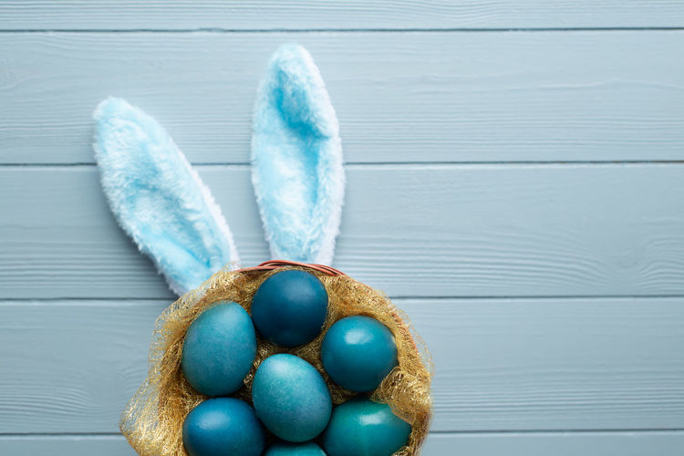 Easter flat lay with blue eggs in the basket and funny bunny ears on light blue wooden background
