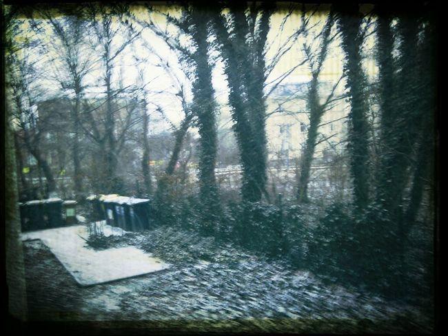 Noch mehr Schnee?