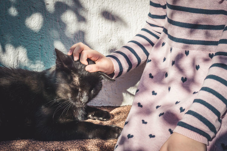 Love in its purest form Black Cat Cats Of EyeEm Love Pink Shadows & Lights Stripes Young Cat Child Fragility Girl Girls Hand Heart Hearts Human Hand Light Leak Outdoors Paws Pet Pink Dress Shadow Sony A6000 Springtime Striped
