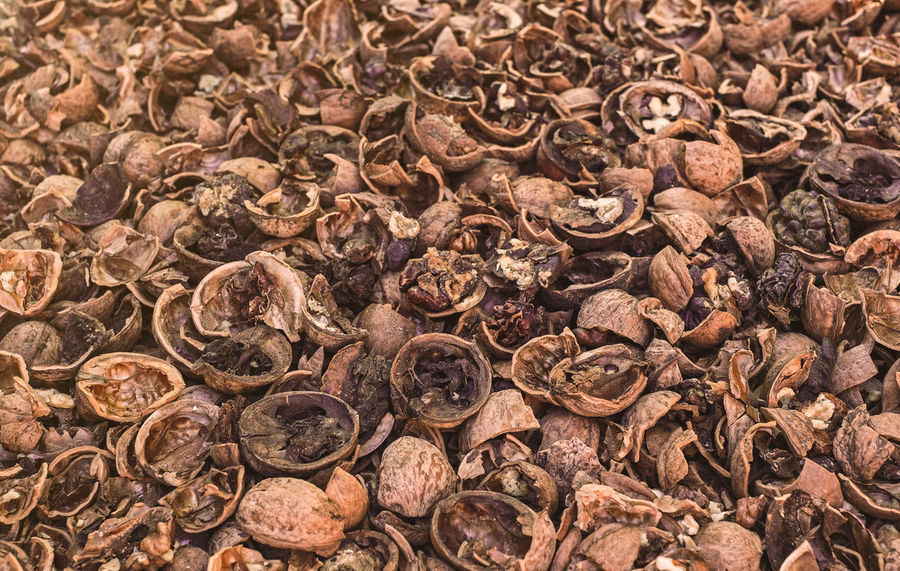 Cracked nuts infected with mold Bad Condition Mold Nuts Abundance Backgrounds Bad Close-up Corupted Cracked Day Decayed Defaced Food Food And Drink Freshness Full Frame Healthy Eating Indoors  Infected Large Group Of Objects Mildew Mold Food Mold Mould Mouldy Nature No People Nuts And Seeds Nuts On The Ground Nutshell Putrid Rotten