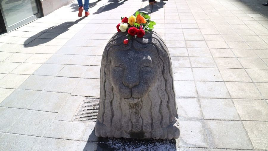 Sculpture Day Statue Outdoors No People Today In Stockholm Terrorist Attack Flower Head Terrorism Sweden Flowers Stockholm City Lionsculpture