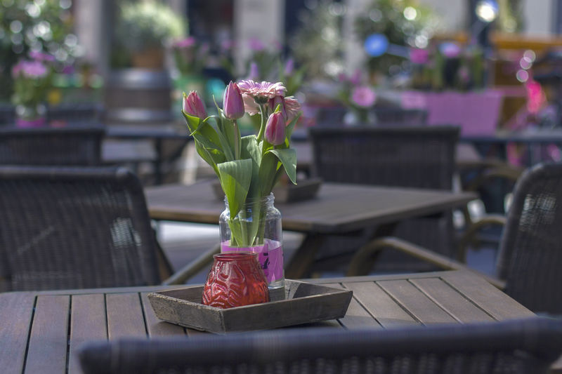 Anjers Arnhem Beauty In Nature Bouquet Bouquet Of Flowers City Life Day Decoration Flower Flowers Focus On Foreground Fragility Freshness Growth Nature No People Pink Color Plant Purple Selective Focus Spring Flowers Still Life The Netherlands Tulpen Violet By Motorola