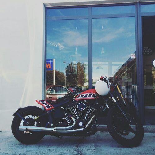 Summertime never ends... Harleydavidson Goodmorning Custombikes Myride Harley Kustomkulture Motorcycle