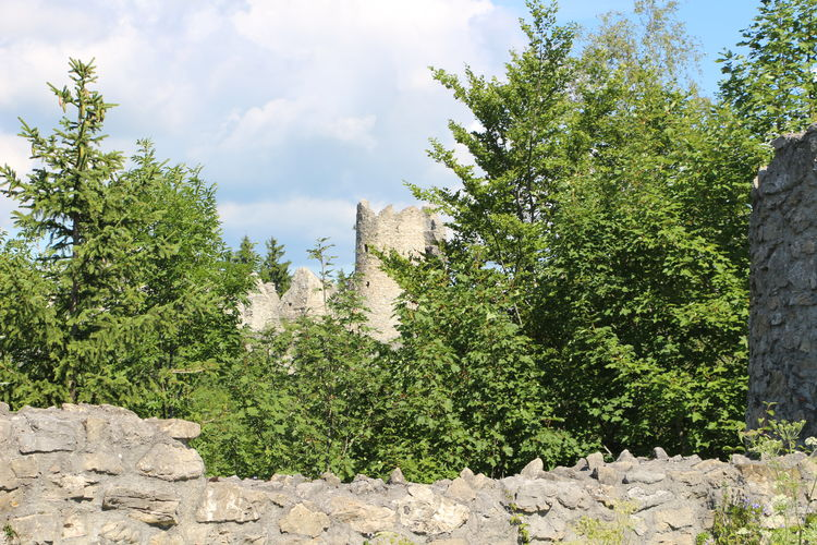 Ruins Ruined Building FirstEyeEmPic First Eyeem Photo Canon Sky Day Nature Architecture Outdoors Tree No People Plant Growth