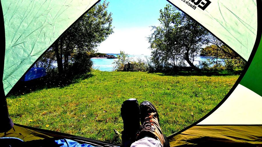 Camping is Bliss Tree Human Leg Personal Perspective Shoe Sky Grass