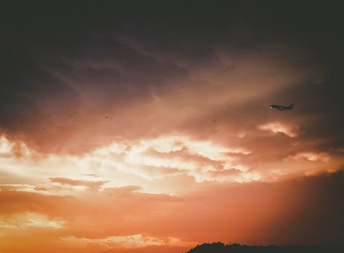 A plane and birds in a dramatic sunset Airplane Cloud - Sky Sunset Mid-air Flying Air Vehicle Sky Transportation Mode Of Transport Nature No People Scenics Outdoors Westtexas