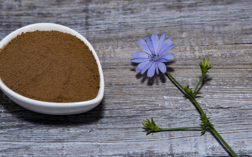 Chicory flower and powder of instant chicory on wooden background. Cichorium intybus. Bowl Chicory Coffee Chicory Flower Close-up Flower Flower Head Flowering Plant Food Food And Drink Freshness Herb Indoors  Ingredient Kitchen Utensil Leaf Nature No People Plant Spice Still Life Studio Shot Table Wellbeing Wood - Material Wooden Spoon
