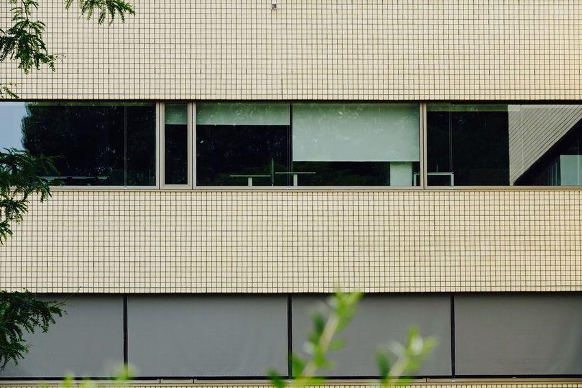 Wall Tiles Tiles Pattern Antwerp Vintage Architecture Tiles Textures Facade Building Built Structure Architecture Building Exterior No People Window Day Building Wall - Building Feature Sunlight Outdoors Shadow