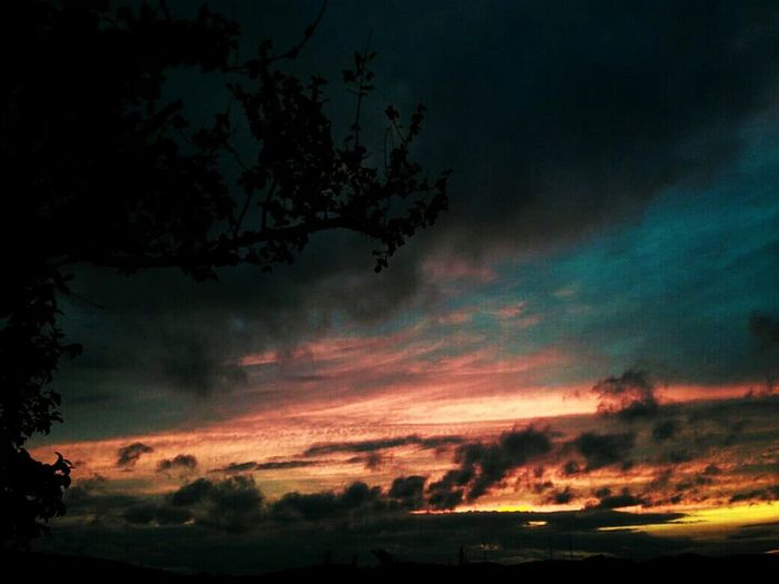 🌄 Dramatic Sky Night Sunset Cloud - Sky Outdoors No People Tree Nature Sky Scenics Beauty In Nature