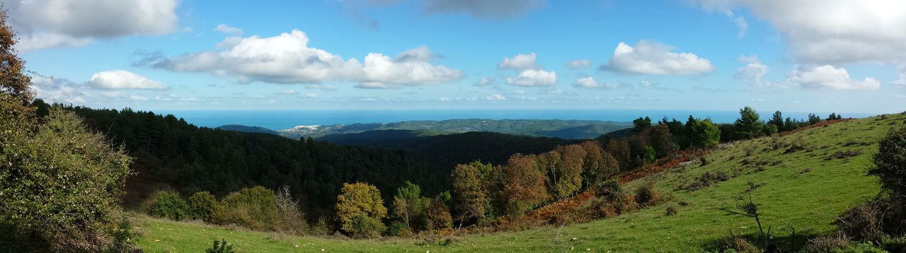 Autumn In Apulia Blue Sky With Some Clouds Contrasting Colours Blue And Green Field, Forest, Hills, Sea And Sky Foresta Umbra , Gargano, Puglia Green Fiel In The Fore Green Field With Trees No People Panoramic View Over Gargano Sea In The Background