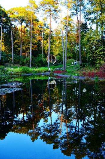 Autumn Autumn Colors Reflection Nature Water Beauty In Nature Art Is Everywhere Outdoors Woodpark Waterreflections  Lgs Bad Lippspringe Colour Of Life In The Forest In The Mood Forest Water Mirror Waterreflections  Mirrored Mirror Picture Reflektionen Im Wasser Golden Hour Golden October