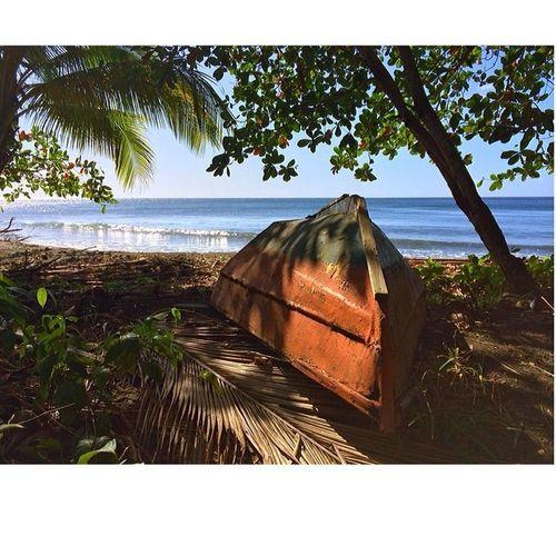 Islandlivity Instagram_473 Islandlife Ilivewhereyouvacation Wu_caribbean Weatindies_bnw Westindies_colors Westindies_people Allshots_ Ourbestshots Iphone5s Instagram Grenada Awesome HDR