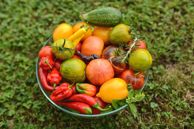 Close-Up Of Tomatoes And Chili Peppers In Basket On Field