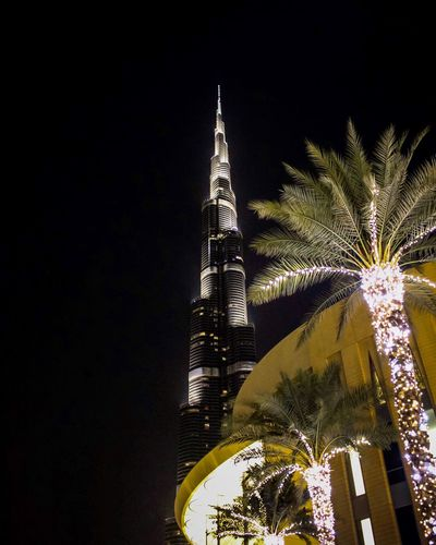 •From the earth to the sky• Architecture Built Structure Illuminated Palm Tree Building Exterior Low Angle View Modern Travel Destinations Tree Celebration No People City Outdoors Sky