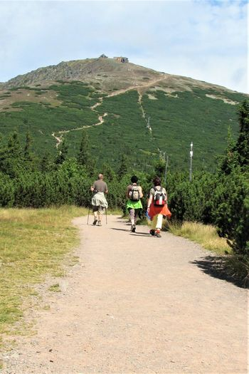 Czech Republic Path Trip Activity Adult Day Group Of People Krkonose Landscape Leisure Activity Mountain Nature Outdoors Real People Rear View Road Sunshine Trail Travel Walking