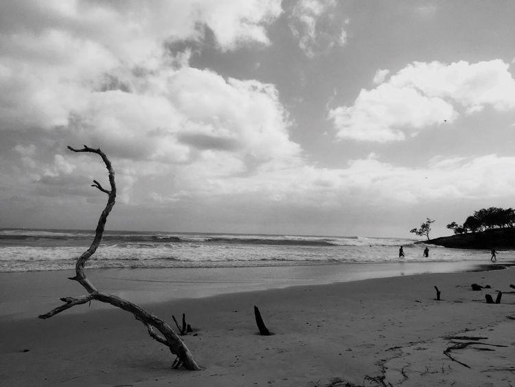 EyeEmNewHere Stradbroke Island Adder Black & White Coastal Feature