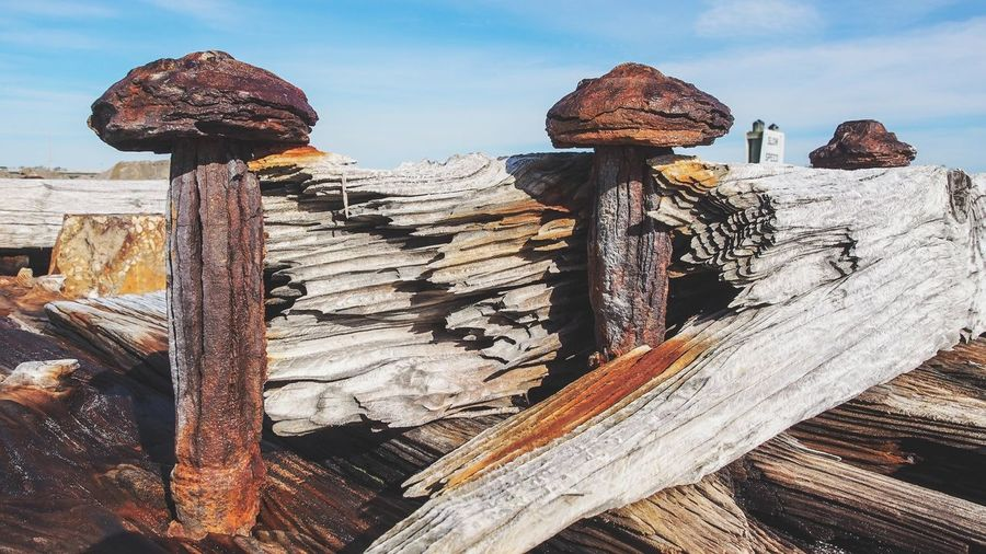 Stack of logs withe rusty spikes against sky
