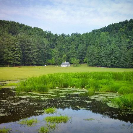 Mini Switzerland of India Khajjiar Chamba Himachal