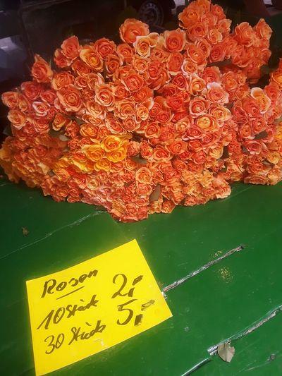 Rosen Market Stall Marktstand Marktplatz Roses Rose🌹 Rose - Flower Roses🌹 Rose Garden Markt My Funny Valentine Valentine's Day  Offer On Offer Orange Color Orange Green Table