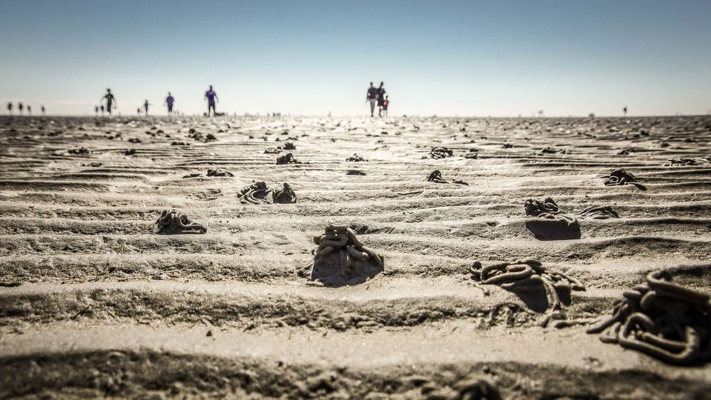 walking on the bottom of the sea / Gigantic Wattwurmhäufchen People Horizon Dry Low Angle View Frog Perspective Sea Bottom Tide Wattenmeer Wattwandern Traveling Hiking Little Tiny Pattern Structures Waves The Great Outdoors With Adobe North Sea Sand Sand & Sea The Great Outdoors - 2016 EyeEm Awards Beautifully Organized Silhouettes