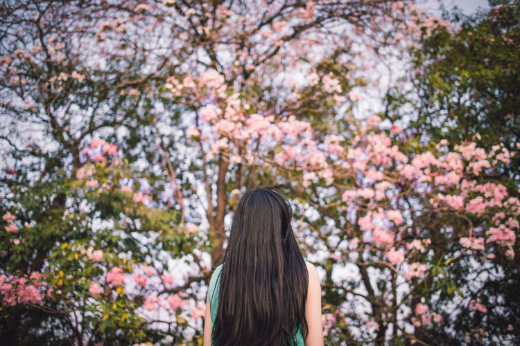 Rear view of woman with long hair standing in park during spring