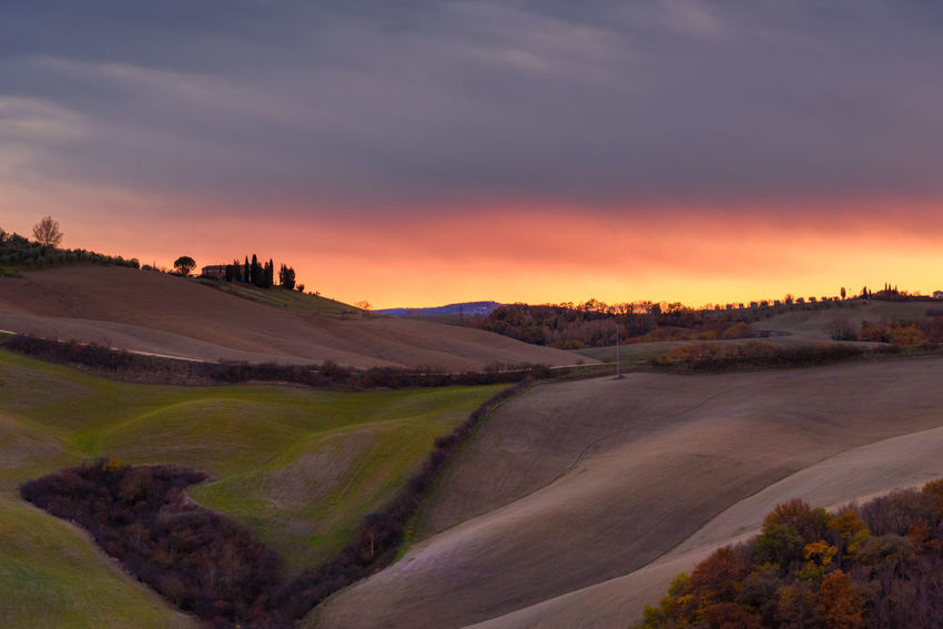 Crete Senesi Torre A Castello Tuscany Tuscany Countryside Beauty In Nature Day Europe Field Italian Landscape Nature No People Outdoors Rural Scene Scenics Siena Sky Sunset Tranquil Scene Tranquility Tree