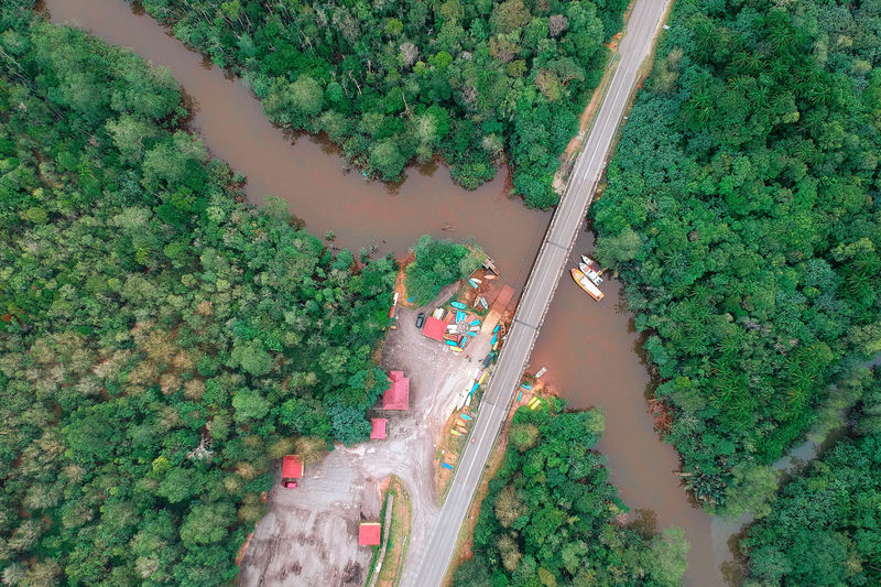Aerial View Beauty In Nature Day Directly Above Green Color Growth High Angle View Incidental People Land Landscape Mode Of Transportation Nature Outdoors Plant Scenics - Nature Transportation Travel Tree Water