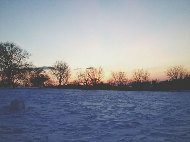Sunset Park Snow ❄ Sunset✨trees✨ :))) Photography