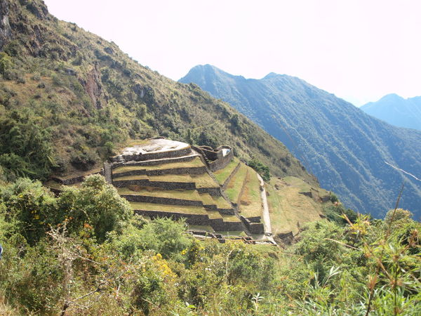 Terraces on the Inca Trail Hiking Hiking Trail Inca Trail Macchu Picchu Mountain Mountain Range Nature Peru Tranquility