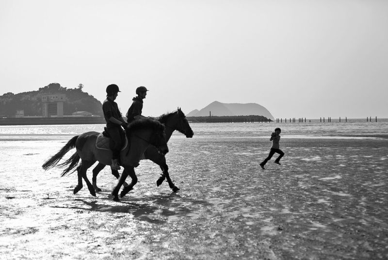 Blackandwhite Black & White Blackandwhite Photography Canon5dmk2 EyeEm Best Shots EyeEm Best Edits EyeEm Gallery EyeEmBestPics Horse Riding Seaside Monochrome Telling Stories Differently Monochrome Photography