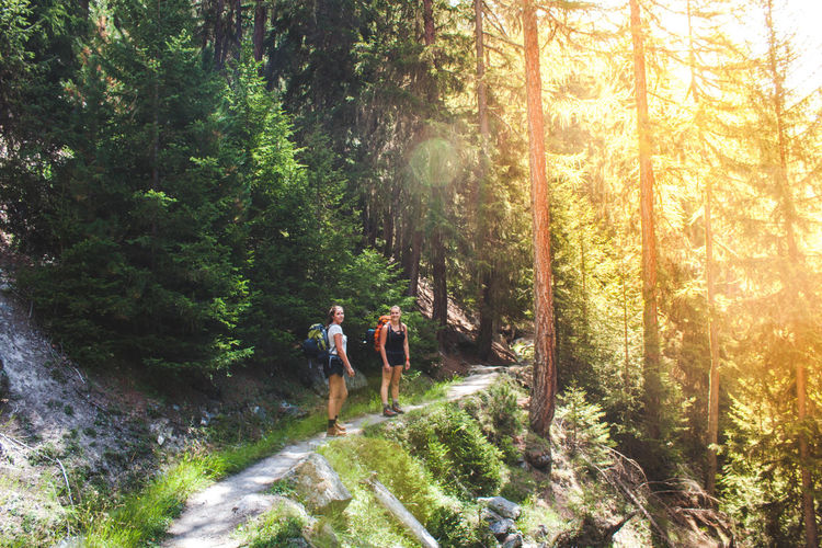 Hiking Into The Wild Nature Nature Photography Adventure Beauty In Nature Forest Hiking Into The Woods Lens Flare Nature Nature_collection Switzerland The Great Outdoors - 2018 EyeEm Awards