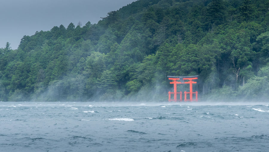 Hakone shrine & Lake Ashi Water Tree Plant Nature Beauty In Nature Day Scenics - Nature No People Fog Built Structure Tranquility Outdoors Tranquil Scene Travel Destinations Power In Nature Lake Torii Gate Japan Hakone Lake Ashi Travel Zen Hakone Shrine