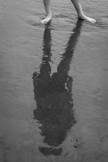 Low section of person standing on puddle