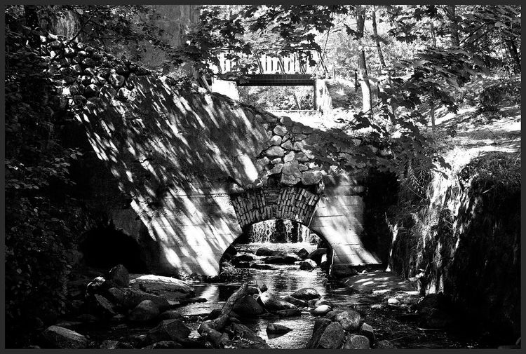 Ithilien Creative Light And Shadow Tolkien Tolkienesque Vilnius Lithuania Nature Old Watermill  Watermill Arda Middle-earth
