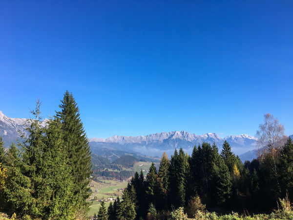 Leogang, Austria in Autumn outdoor Austria Autumn Beauty In Nature Blue Clear Sky Destination Forest Growth Landscape Mountain Mountain Range Nature Nature No People Outdoors Pinaceae Pine Tree Pine Woodland Scenics Sky Torusim Tree Trees Vegetation View