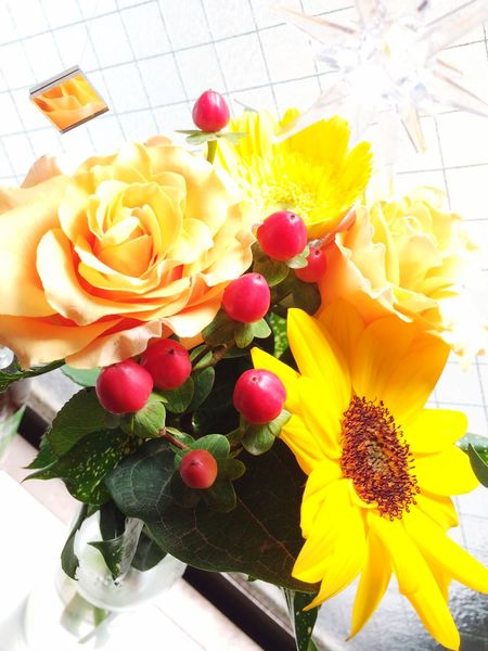 Flowers Yellow Flower Yellow Vivid Flower Vivid Flowers