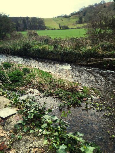Mill Stream Dunster Mill