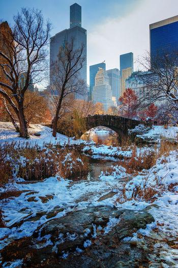 Central Park Fall Colors Gapstow Bridge Winter Wintertime Architecture Bridge Building Exterior Built Structure City Cityscape Cold Temperature Nature Snow